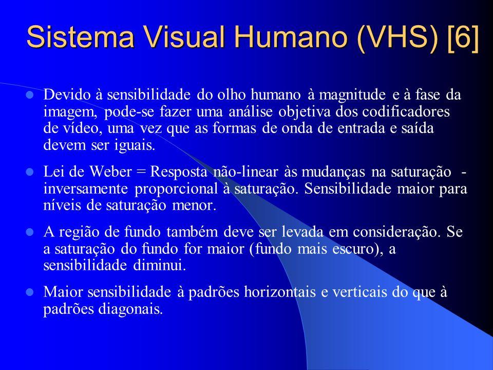 Sistema Visual Humano (VHS) [6]